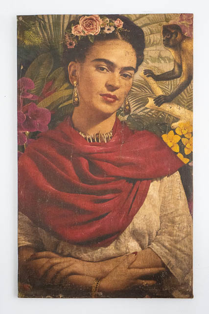 Frida Canvas 4
