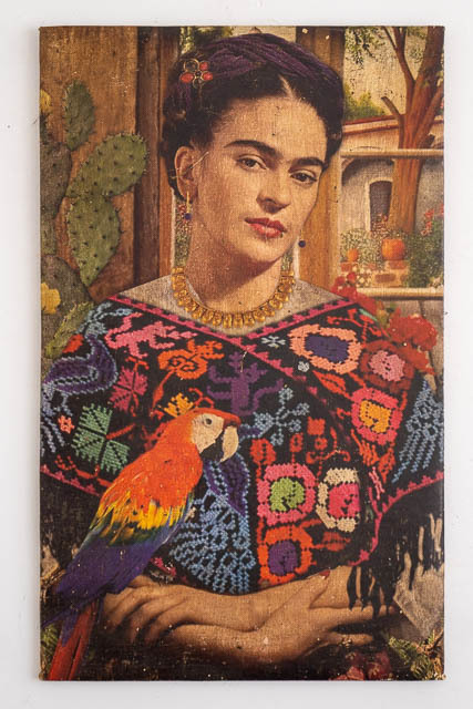Frida Canvas 8